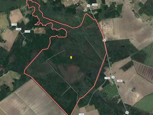 1850 Ac Recreational in Tyrrell Co : Columbia : Tyrrell County : North Carolina