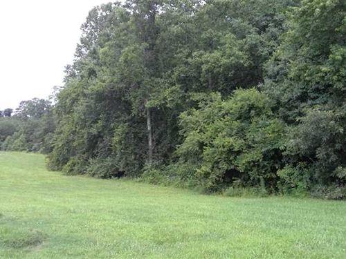 13+ Ac Private And Wooded Near Hic : Hickory : Catawba County : North Carolina