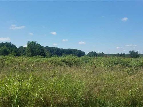 36 Acres w/ Pond in Gaston Coun : Bessemer : Gaston County : North Carolina