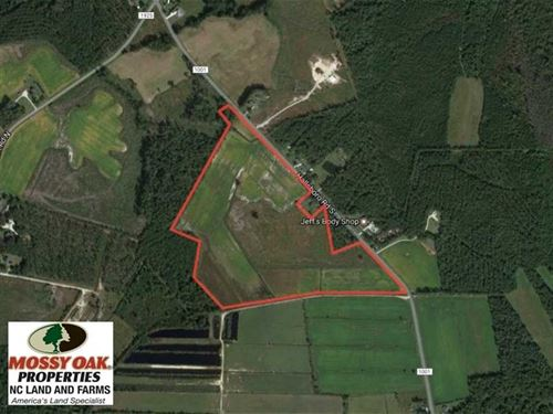 Under Contract, 58 Acres of Farm : Whiteville : Columbus County : North Carolina