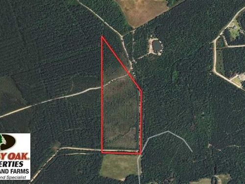 Under Contract, 28 Acres of Hunti : Beulaville : Duplin County : North Carolina