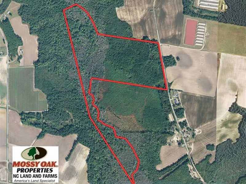Maxton Nc Map.Under Contract 52 Acres Of Hunti Farm For Sale Maxton Robeson