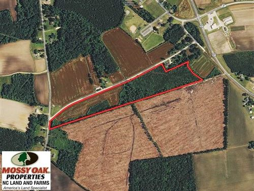 23 Acres of Farm And Timber Land : Harrells : Sampson County : North Carolina