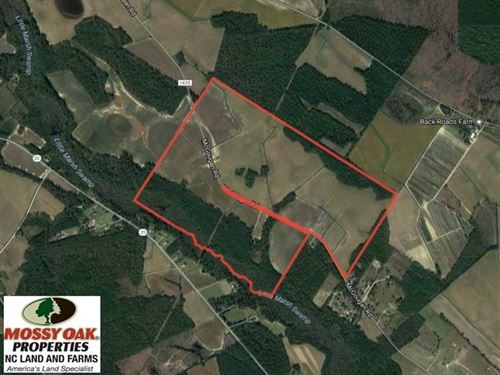 Under Contract, 380 Acres of Farm : Lumber Bridge : Robeson County : North Carolina