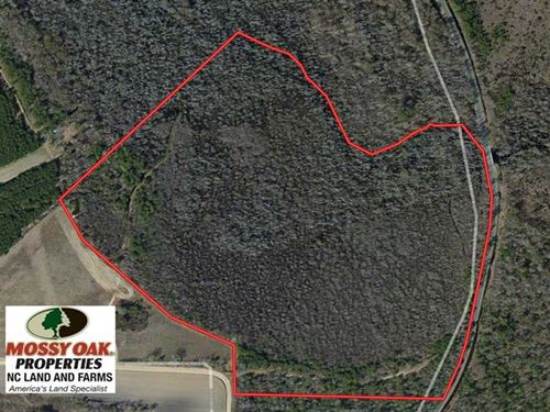 Under Contract, 65 Acres of Hunti : Lumberton : Robeson County : North Carolina