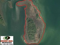 62 Acre Private Island For Sale in : Marshallberg : Carteret County : North Carolina