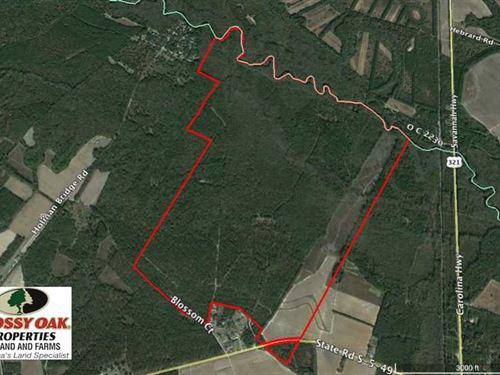 Reduced, 605 Acres of Waterfront : Denmark : Bamberg County : South Carolina