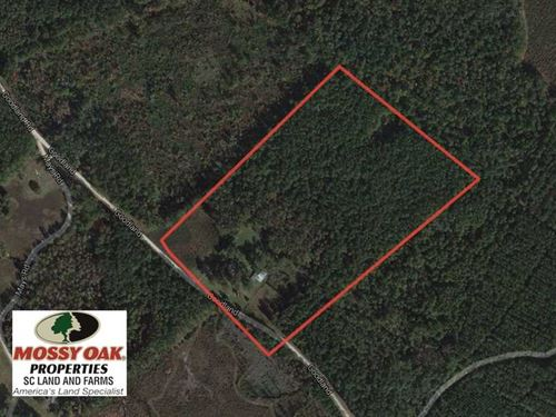 27 Acres Home And Land For Sale in : Bamberg : South Carolina