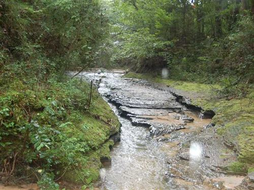 A Truly Unique Property a Must to : Newton : Dale County : Alabama
