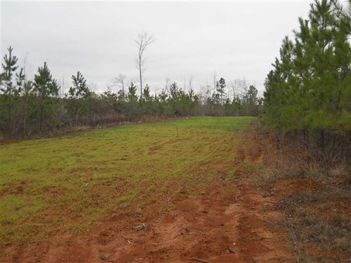 Reduced,118 Acres of Hunting And : Lodi : Montgomery County : Mississippi