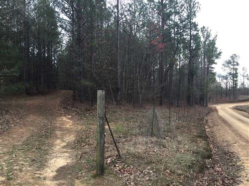 80 Acres in Attala County For a gr : Kosciusko : Attala County : Mississippi