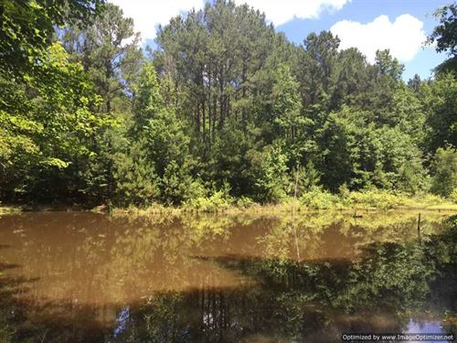 40 Acres Leake County-Good Timber : Kosciusko : Leake County : Mississippi