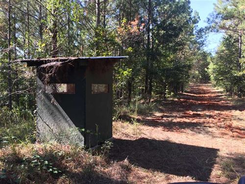 Great Hunting And Investment Trac : Kosciusko : Attala County : Mississippi