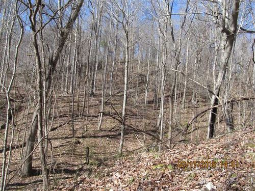 263 Acre Premier Recreational And : Lexington : Holmes County : Mississippi