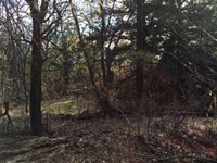 Hunting And Crp Land For Sale in : Larned : Pawnee County : Kansas