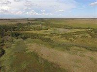 140 Acres of Excellent Hunting : Ulysses : Grant County : Kansas