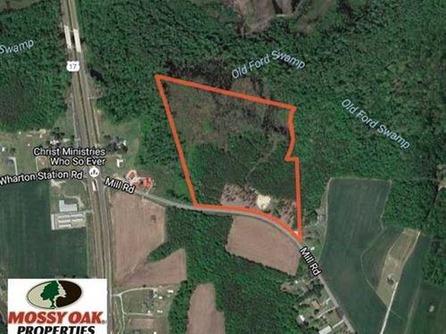 Under Contract, 23 Acres Hunting : Washington : Beaufort County : North Carolina