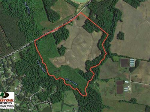 Reduced, 101 Acres of Farm And Hu : Grimesland : Pitt County : North Carolina