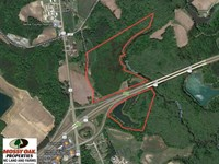 Reduced, 62 Acres of Hunting Land : Windsor : Bertie County : North Carolina