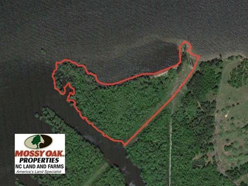 Reduced, 12 Acres of Waterfront : Roper : Washington County : North Carolina