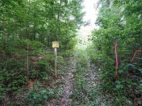 Buckeye Ridge Rd - 51 Acres - Morg : Stockport : Morgan County : Ohio
