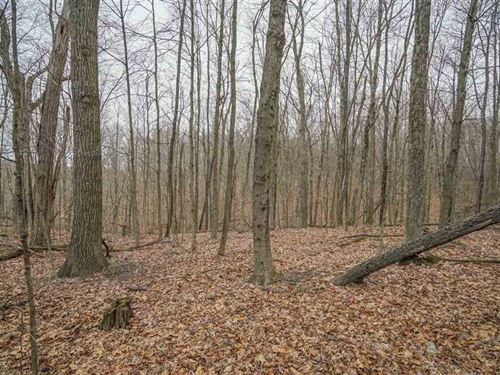 Bell Rd - 10 Acres - Morgan County : Malta : Morgan County : Ohio