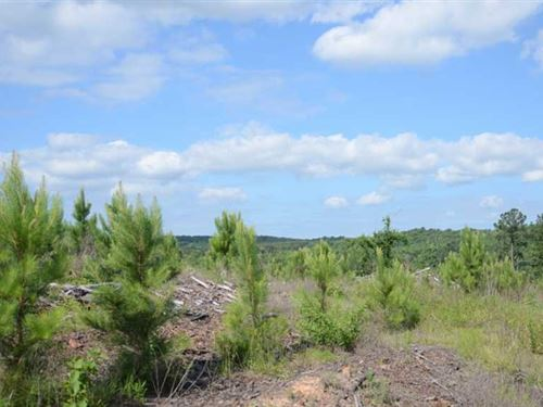 Hollywood Mountain Tract - 353 Acr : Jacksonville : Cherokee County : Texas