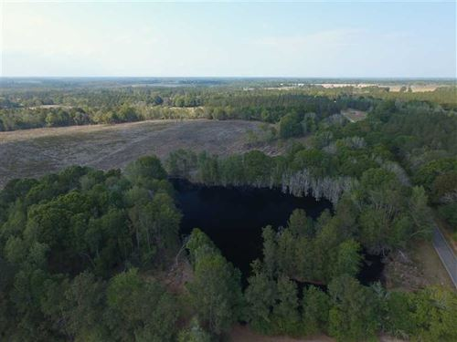 101 Acres With 3 Ponds : Collins : Tattnall County : Georgia