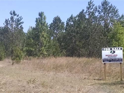 10 Acres of Land in Pierce County : Blackshear : Pierce County : Georgia
