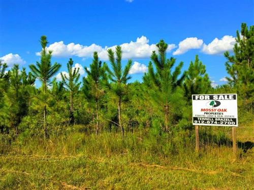 50 Acres Land For Sale in Chalrton : Saint George : Charlton County : Georgia