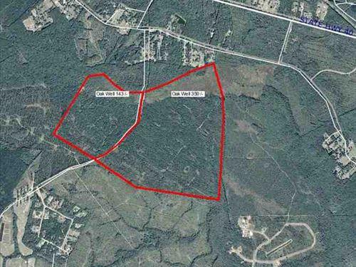 350 Acres Timber Land For Sale : Kingsland : Camden County : Georgia