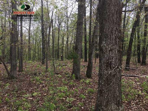 Taking Back-Up Offers- Quality Har : Williford : Sharp County : Arkansas