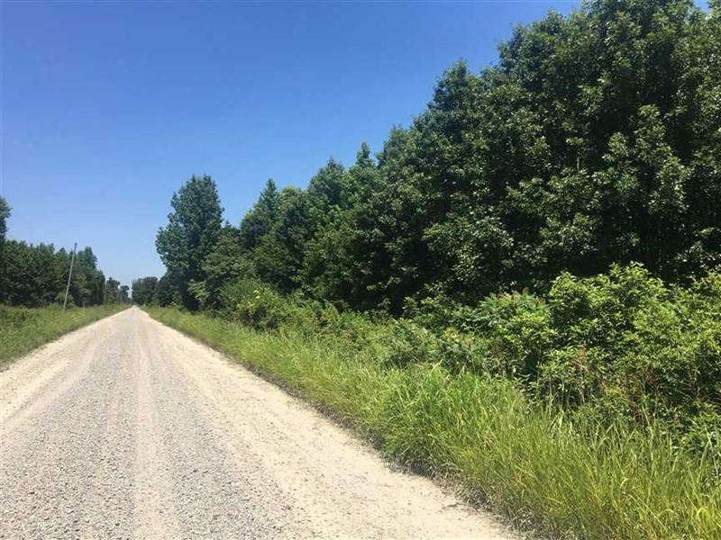 30 Acres in White County Between : Bald Knob : White County : Arkansas