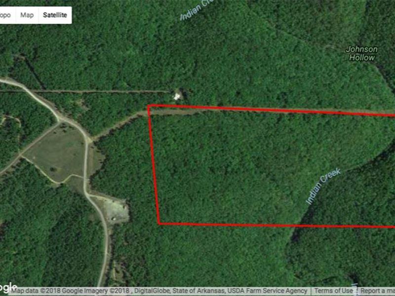 Reduced,80 Acres Timber Land : Shirley : Van Buren County : Arkansas