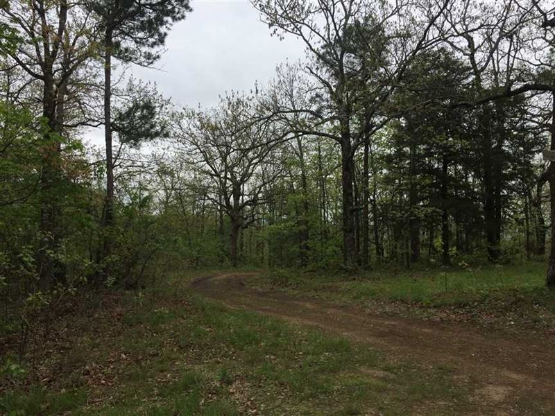 400 Acres of Prime Recreational an : Havana : Logan County : Arkansas