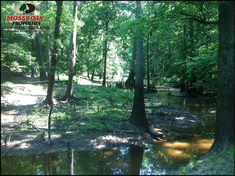 60 Acres on Corner of Graham Roa : Cabot : Lonoke County : Arkansas