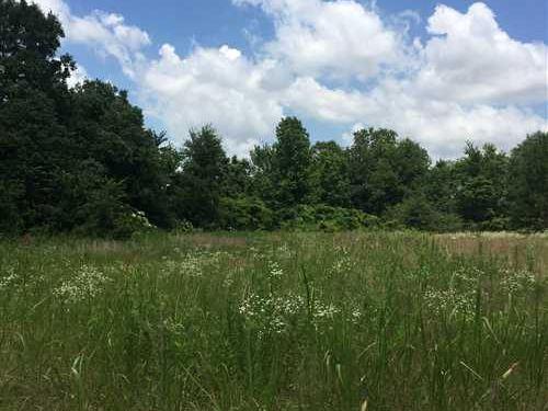 73 Acres On First Creek Near : Colt : Saint Francis County : Arkansas