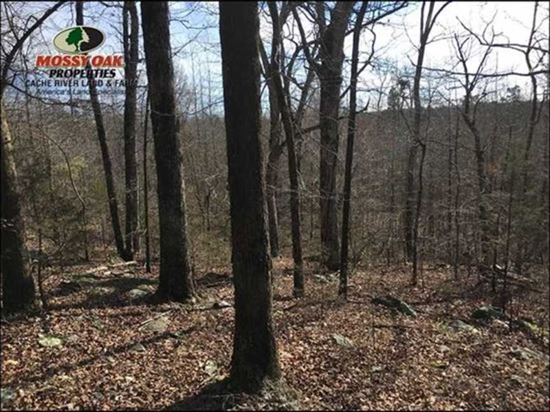 Price Reduced Motivated Seller : Concord : Cleburne County : Arkansas