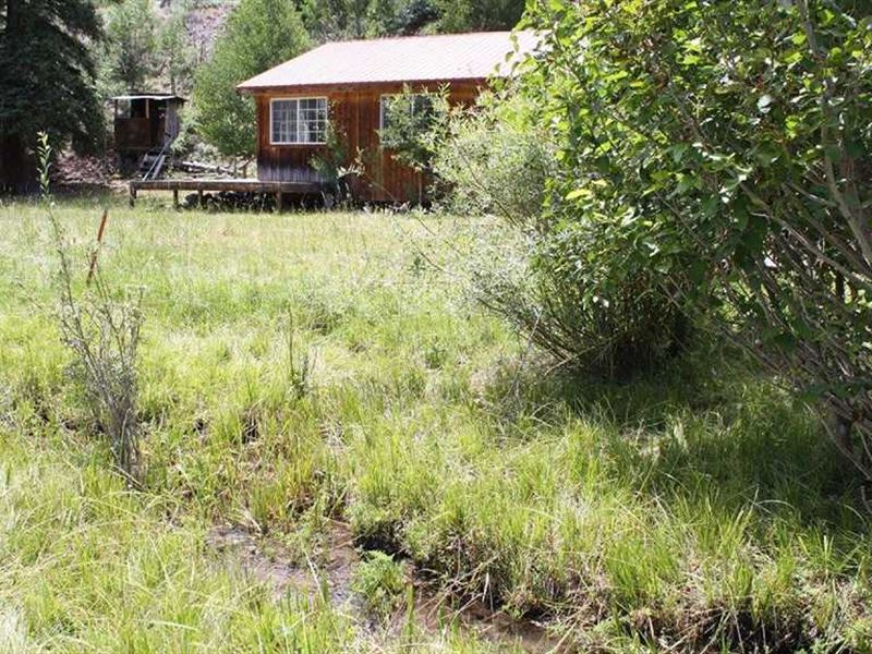 Middle Creek Elk Camp : Saguache : Saguache County : Colorado