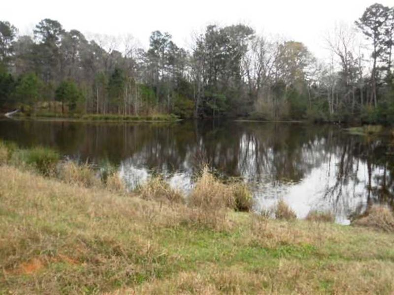 58.87 Acres With 2 Ponds : Jacksonville : Cherokee County : Texas