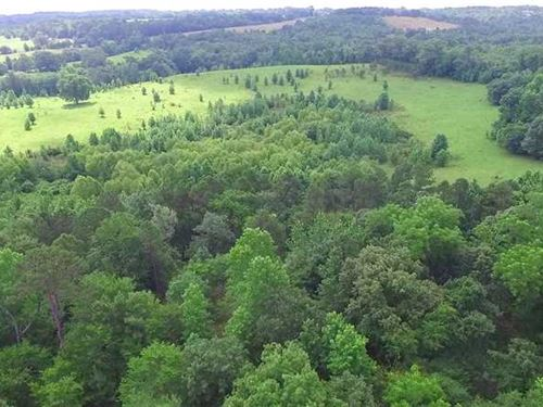 57.9 Acre Cattle And Recreational : Frankston : Anderson County : Texas
