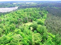 Excellent 164 Acre Hunting, Recrea : Jacksonville : Cherokee County : Texas