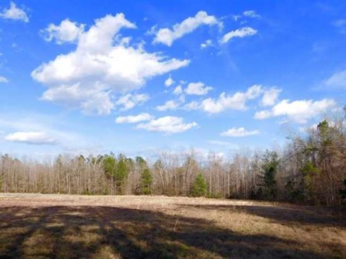 Reduced, 5.99 Acres of Hunting an : Manning : Clarendon County : South Carolina