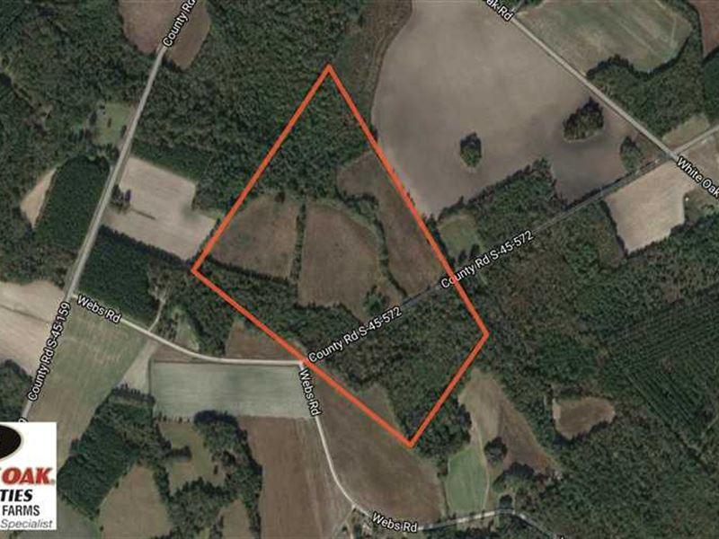 Price Reduced, 62.2 Acres of Hunti : Kingstree : Williamsburg County : South Carolina