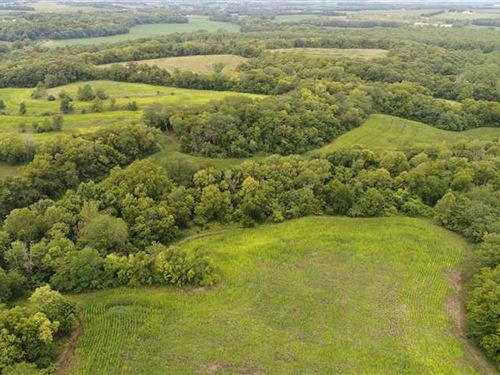 63 Acres Of Prime Hunting : Fillmore : Andrew County : Missouri