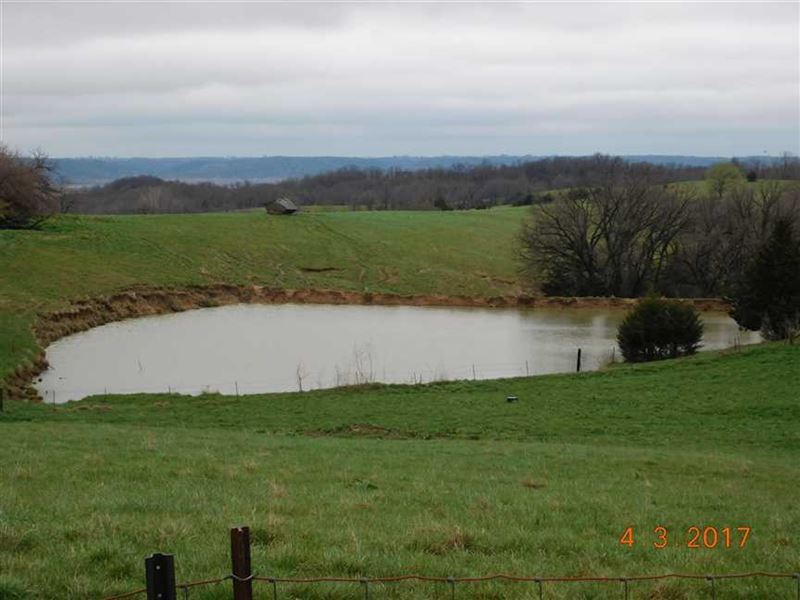 Reduced, Pasture Ground in : Oregon : Holt County : Missouri