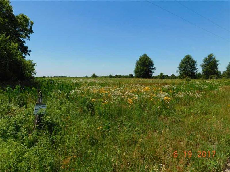Hunting Farm Crp Income Livingston : Ludlow : Livingston County : Missouri