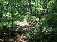 27 Acre Build Site or Hunting Trac : Camdenton : Camden County : Missouri