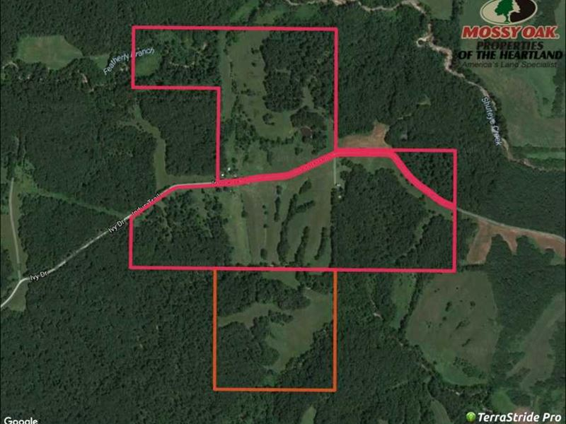 191 Acres Pasture/Timber Combo : Green Castle : Putnam County : Missouri