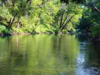 763 Acres Big Piney River Prope : Licking : Texas County : Missouri